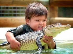 Применение индикатора Gator